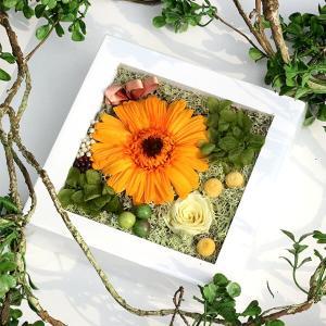 フルーティーオレンジのガーベラミニフレーム lpm0120 イメージ4