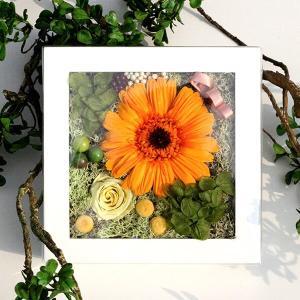 フルーティーオレンジのガーベラミニフレーム lpm0120 イメージ5