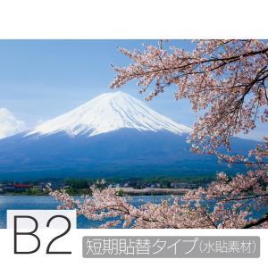 お風呂ポスター 満開の桜と富士山 B2 短期貼替タイプ(水貼素材) littleoasis