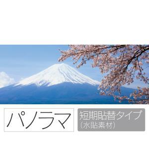 お風呂ポスター 満開の桜と富士山 パノラマ 短期貼替タイプ(水貼素材) littleoasis