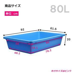 たらい 水槽 プラスチック 左官 ブルコンテナFP-80|livewell|02