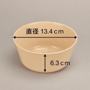 アウトドア 食器 セット プラスチック お皿 ホリデーレジャーパック 4セット(抗菌)|livewell|02