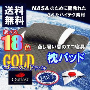 アウトラスト 枕パッド 2枚組 日本製 ゴールドラベル 冷感|livingdays
