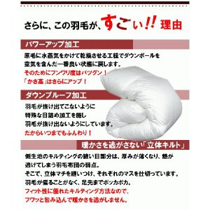 羽毛布団 シングル日本製 ニューゴールドラベル ホワイトダックダウン ライトタイプ|livingdays|02