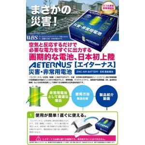 災害・非常用発電池  エイターナス1台+付属正弦波インバータ1台《AETERNUS エイターナス》 空気亜鉛(一次)電池 DC12V エイターナスAセット|livingheart