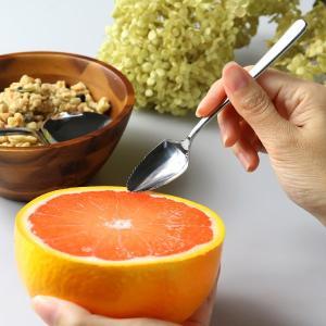 グレープフルーツスプーン ステンレス製 スプーン 食洗機対応 日本製 ( フルーツ 果物 グレープフルーツ オレンジ カトラリー )|livingut