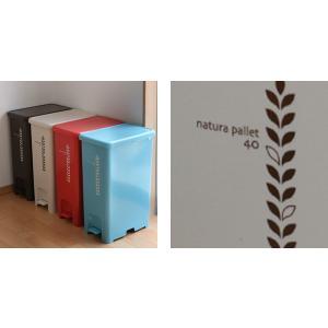 ゴミ箱 ふた付き ペダルペール 40L  ( ごみ箱 ダストボックス ダストBOX )|livingut|06