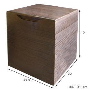 米びつ 桐製 20kg 焼桐 ( 米櫃 ライスボックス ライスストッカー 20kg用 20キロ )|livingut|02