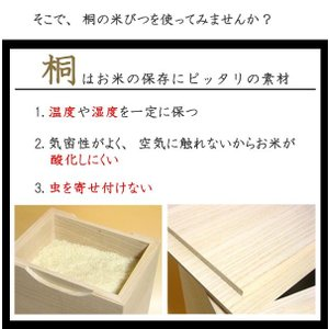 米びつ 桐製 20kg 焼桐 ( 米櫃 ライスボックス ライスストッカー 20kg用 20キロ )|livingut|04