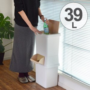 ゴミ箱 分別 二段 ダストボックスファイン 39L