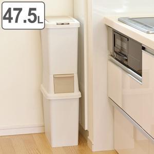 ゴミ箱 分別 二段 ダストボックスファイン スリム 47.5L ( ごみ箱 ダストボックス ダストBOX くず入れ くずカゴ 隙間 省スペース )の画像