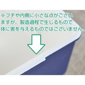 お弁当箱 1段 日本製 STORAGE コンテナランチ 900ml ドーム型 ( レンジ対応 食洗機対応 ランチボックス 弁当箱 丼 )|livingut|11