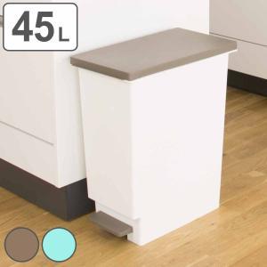 ゴミ箱 ペダル式 ネオカラー 分別 スリムペダル 45 ( ごみ箱 ダストボックス ダストBOX 45L 45l スリム キッチン 台所  )の画像