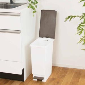 ゴミ箱 ペダル式 ネオカラー 分別 スリムペダル 45 ( ごみ箱 ダストボックス ダストBOX 45L 45l スリム キッチン 台所  ) livingut 05