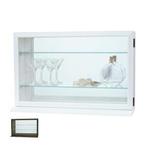 コレクションケース ガラスケース スカーラY 約幅56cm ( キャビネット コレクション ラック ガラス 収納 シンプル 棚 完成品 ) livingut
