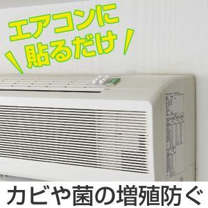 エアコン用 防カビ 防カビフレグランス エアコン貼り付け カビ防止 グリーンハーブの香り ( エアコン カビ防止 貼付 貼る 貼付け )|livingut