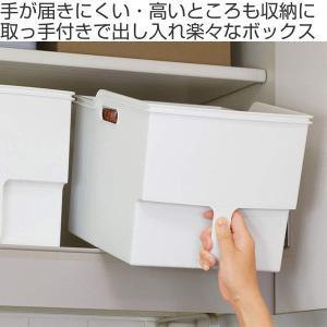 キッチン収納ケース 吊り戸棚ボックスワイド 幅24cm ( 収納ボックス 整理ケース 取っ手付き ) livingut 02