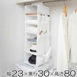 吊り下げ収納 6段 衣類 小物収納 幅23×奥行30×高さ80cm クローゼット収納 ( 衣類 収納 整理 )|livingut