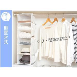 吊り下げ収納 6段 衣類 小物収納 幅23×奥行30×高さ80cm クローゼット収納 ( 衣類 収納 整理 )|livingut|04