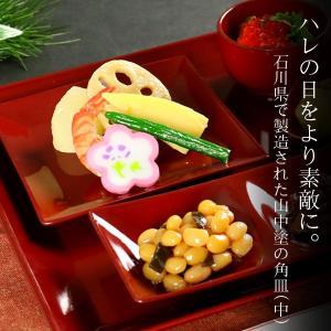 角皿 14cm クリーンコート加工 食器 山中塗 日本製 ( 電子レンジ対応 お皿 食洗機対応 小皿 皿 和食器 割れにくい )|livingut|04