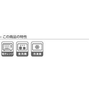 角皿 14cm クリーンコート加工 食器 山中塗 日本製 ( 電子レンジ対応 お皿 食洗機対応 小皿 皿 和食器 割れにくい )|livingut|09