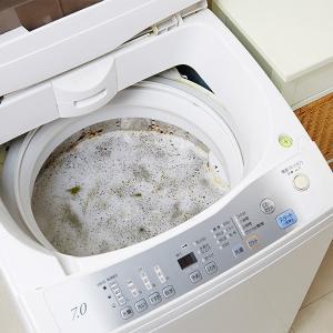 洗濯槽の洗浄剤B 全自動洗濯機用 300g クラフトマンシップ 木村石鹸 ( 洗剤 洗濯機 全自動 )|livingut|05