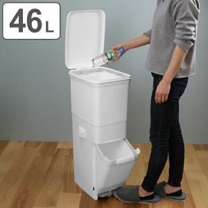 ゴミ箱 ふた付き 分別 ツインペダルペール ネオカラー 2段 46L 幅28.5cm ( ごみ箱 分別ごみ箱 6分別 約 幅30 cm )|livingut