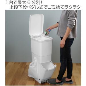 ゴミ箱 ふた付き 分別 ツインペダルペール ネオカラー 2段 46L 幅28.5cm ( ごみ箱 分別ごみ箱 6分別 約 幅30 cm )|livingut|02