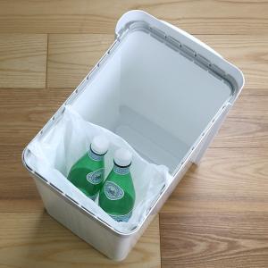 ゴミ箱 ふた付き 分別 ツインペダルペール ネオカラー 2段 46L 幅28.5cm ( ごみ箱 分別ごみ箱 6分別 約 幅30 cm )|livingut|11