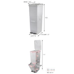 ゴミ箱 ふた付き 分別 ツインペダルペール ネオカラー 2段 46L 幅28.5cm ( ごみ箱 分別ごみ箱 6分別 約 幅30 cm )|livingut|03