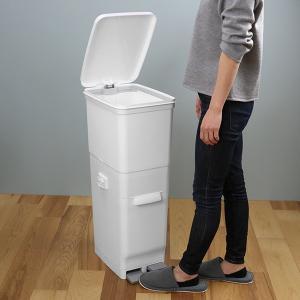 ゴミ箱 ふた付き 分別 ツインペダルペール ネオカラー 2段 46L 幅28.5cm ( ごみ箱 分別ごみ箱 6分別 約 幅30 cm )|livingut|05