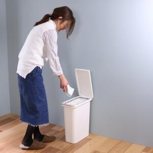 ゴミ箱 臭わない 防臭 パッキン付き 20L スリム ( ごみ箱 ふた付き ダストボックス 縦型 キッチン )|livingut|15