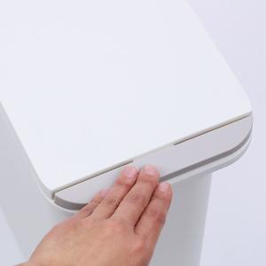 ゴミ箱 臭わない 防臭 パッキン付き 20L スリム ( ごみ箱 ふた付き ダストボックス 縦型 キッチン )|livingut|20