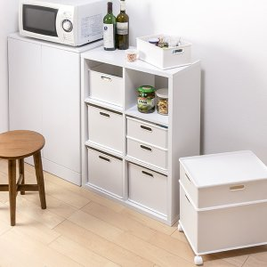 カラーボックス 横置き インナーボックス 収納 squ+ ハーフ インボックス プラスチック 日本製 ( 収納ボックス 収納ケース ボックス ) livingut 11