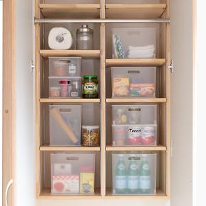 カラーボックス 横置き インナーボックス 収納 squ+ ハーフ インボックス プラスチック 日本製 ( 収納ボックス 収納ケース ボックス ) livingut 20