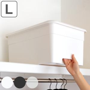 収納ボックス L 幅34×奥行49×高さ23cm オンボックス フタ付き プラスチック 日本製 ( キッチンストッカー ストッカー 収納ケース 収納 ケース 取っ手付き )|livingut
