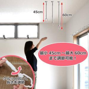 室内物干し 吊下げ型室内物干 長さ45cm〜60cm 伸縮 ( 部屋干し 吊り下げ 天井 )|livingut|04
