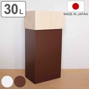 ゴミ箱 ヤマト工芸 yamato W CUBE 30