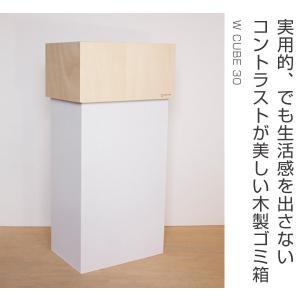 ゴミ箱 ヤマト工芸 yamato W CUBE 30|livingut|02