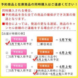 冷水筒 スリムジャグ 1.1L 横置き 縦置き 耐熱 日本製 当店オリジナル商品 ( ピッチャー 麦茶 冷水ポット 麦茶ポット )|livingut|02