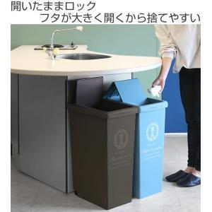 ゴミ箱 45リットル ふた付き スライドペール 45L ( ごみ箱 ダストボックス キッチン )|livingut|02
