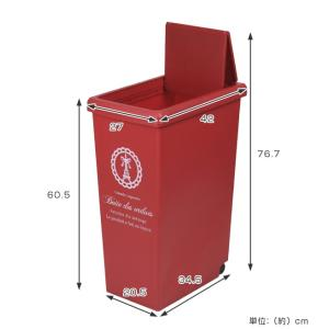 ゴミ箱 45リットル ふた付き スライドペール 45L ( ごみ箱 ダストボックス キッチン )|livingut|04