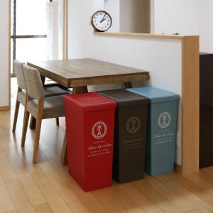 ゴミ箱 45リットル ふた付き スライドペール 45L ( ごみ箱 ダストボックス キッチン )|livingut|09