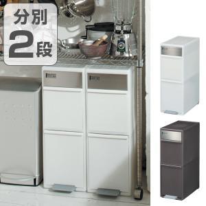 ゴミ箱 分別 スイングステーション ワイド 2段