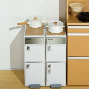 ゴミ箱 ごみ箱 分別ゴミ箱 分別スイングステーションワイド ウッドトップ 2段 ( 分別 キッチン ダストボックス )