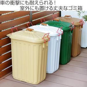 ゴミ箱 ふた付き PALE×PAIL ペールペール ダストビン 60L ( ダストボックス ごみ箱 キッチン )|livingut|02