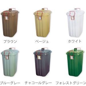 ゴミ箱 ふた付き PALE×PAIL ペールペール ダストビン 60L ( ダストボックス ごみ箱 キッチン )|livingut|03