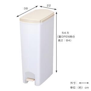 ゴミ箱 ふた付き ペダル式 セパ 超スリムペダル 26L ( スリム ペダル ダストボックス ) livingut 03