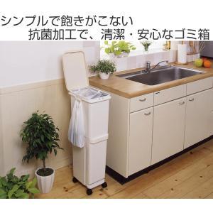 ゴミ箱 ふた付き 分別 スリム セパ 2段 34.5L ( ダストボックス ごみ箱 キッチン )|livingut|02