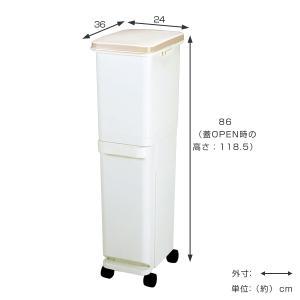 ゴミ箱 ふた付き 分別 スリム セパ 2段 34.5L ( ダストボックス ごみ箱 キッチン )|livingut|03